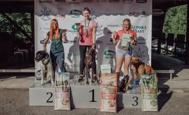 Beskydský Dogmaraton 2021